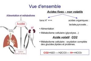 rsum-acido-basique-rctifi-2-638