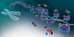 portfolio-epigenetique-1-1100x558